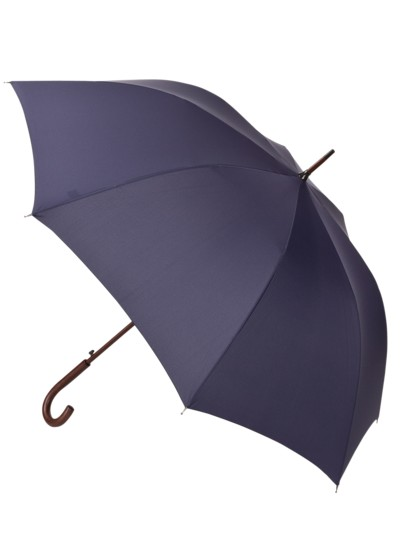 Large umbrella v BLUE